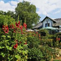 Gasthof Waldeslust 30x40-201507-blühender-Garten-6663-sh-200x200 Bilder - Umgebung